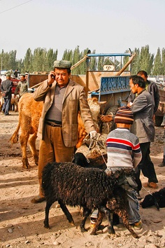 Life on Nanchang Lu: Yaks, Goats and Fat-Tailed Sheep: The Sunday Animal Market, Kashgar