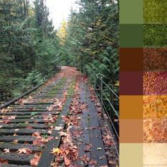 Bridge in Fall - #123quilt #colorplayfriday #color #palette #colorpalette #inspiration #colorinspiration #ilovecolor #colorcrush #ilovefabric #fabriclove #fabricaddict #fall #autumn http://123quilt.blogspot.com/2016/09/color-play-friday-bridge-in-fall.html