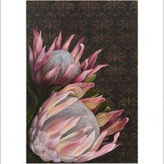 Protea prints, limited edition, available on Hello Pretty, by Christelle P Art, www.christellepretoriusart.co.za www.facebook.com/ChristellePretoriusArt