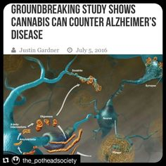 """#Repost @the_potheadsociety:  """"As the baby boom generation begins to reach age 65 and beyond the number of people with Alzheimers disease is escalating rapidly. This debilitating condition causes deterioration of thinking skills and memory leading to the inability to recognize loved ones or carry out basic tasks. It is the 6th leading cause of death in the U.S.  About 5.4 million Americans now live with Alzheimers disease and that number is expected to rise to 13.8 million by 2050 if no…"""