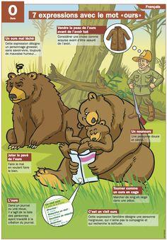 """7 expressions avec le mot """"ours"""""""