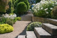 clear gravel patio with pockets of individual plants. then use pots for spots of flower color Garden Spaces, Patio Garden, Hardscape, Entry Garden Ideas, Outdoor Gardens, Mediterranean Garden, Beautiful Gardens, Outdoor Landscaping, Garden Steps