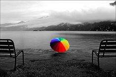 Mindblowing Assortment Of Black And White Photography With Partial Colors | SmashingApps.com