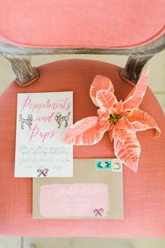 Peppermints & Pups | A Stylish Holiday Fête! | The Perfect Palette