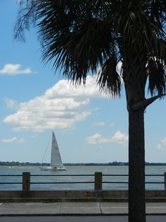 Sailboat off the Battery, Charleston, SC. Another one of my photos that's found its way onto Pinterest.