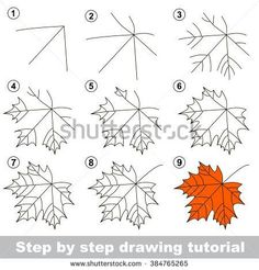 Page shows how to learn step by step to draw a maple leaf. Developing children's skills for drawing and coloring. Easy Drawing Tutorial, Leaf Drawing Easy, Maple Leaf Drawing, Fall Leaves Drawing, Tree Drawing Simple, Flower Drawing Tutorials, Draw Leaves, Drawing Lessons, Drawing Techniques