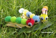 Hungry Caterpillar / Kleine Raupe Nimmersatt