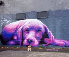 PURPLE STREET ART! by Silly Sully, Melbourne, 2014 | Street Art | Street Artists | Art | modern art | urban artists | urban art | travel | graffiti | mural | Schomp MINI https://www.etsy.com/shop/urbanNYCdesigns?ref=hdr_shop_menu