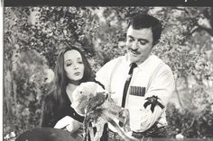 Carolyn bathing her octopus Addams Family Series, The Addams Family 1964, Family Tv Series, Adams Family, Gomez And Morticia, Morticia Addams, Charles Addams, Carolyn Jones, Hair