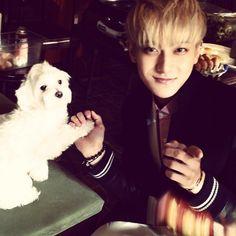 "Tao - ""아이구 강아지야너무귀여워어똑해귀여워귀여워!!!!! 我天哪 小狗好可爱怎么办啊 好可爱好可爱! Dog so cute!!qute. 그리고중국콘서트잘끝났어요 모든팬들고마워요 사랑해~"" | hztttao Instagram Update"