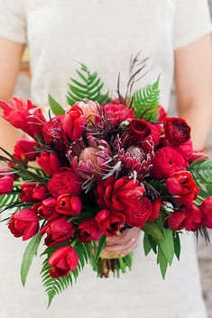 We're starting off our favorite blooming beautiful bouquets with some ravishing red inspiration. Loving the soft and carefree look of this bouquet captured by Michael and Anna Costa. Tulip Bouquet Wedding, Bright Wedding Flowers, Cheap Wedding Flowers, White Wedding Bouquets, Protea Bouquet, Bridesmaid Bouquets, Red Flowers, Arte Floral, Boutonnieres