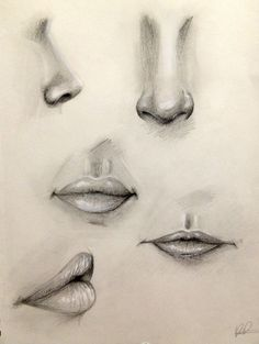 Nose and Lip Practice by Kaspiian.deviantart.com on @DeviantArt