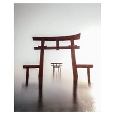 Photo: Takashi Kuriyama @age_cox A beautiful alignment of three Torii the traditional Japanese gates in the water near Tara in Japan (whats fascinating is that they are sometimes half underwater depending on the sea tide). The simplicity the perspective and the angle of view chosen by the photographer are stunning. #xpro2 #xf14mm #fujifeed via Fujifeed on Instagram - #photographer #photography #photo #instapic #instagram #photofreak #photolover #nikon #canon #leica #hasselblad #polaroid…