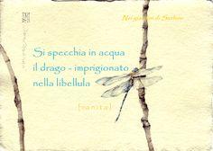 """La libellula, in Giappone, è conosciuta anche col nome di """"piccolo drago"""", si crede infatti che al suo interno vi sia intrappolato un drago… Sin dai tempi antichi, la libellula è vista …"""