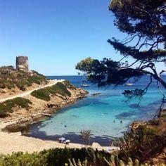 Sardegna, isola dell'Asinara