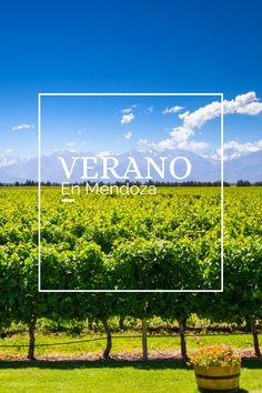 #VERANO #MENDOZA #VIÑEDO #VINO Mendoza, Tours, Scenery, Adventure, Argentina, Summer Time, Places
