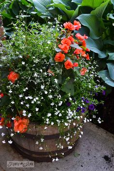 Create the perfect barrel planter with a hanging basket plunked in place! via Funky Junk Interiors
