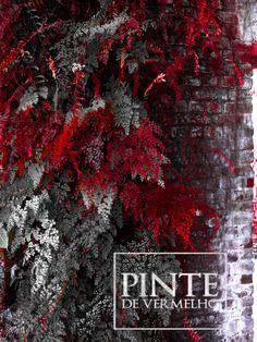 Pinte de Vermelho - fotografia e contexto / delu