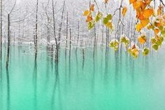 Голубой пруд в Хоккайдо, Япония - 1
