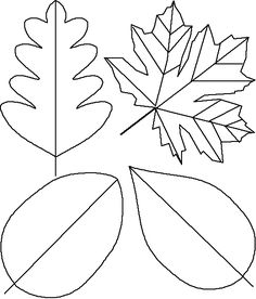 Leaf Template For A Thankful Tree Or Fall Crafts