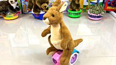 Kangaroo Jack, the Mighty Grizzly Bear, the Wise Marmot, the Snicky Weasel and The Alligator are here for you. Visit their parade and pick the cutest of them. Kangaroo Jack, Wild Animals, Cute Animals, Animal Pick, Dancing Toys, Amazing Songs, Youtube Banners, Funny Toys, All Toys