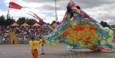 Celebra el cumpleaños de Bogotá: Festival de Verano 2013 | Universidad de Bogotá Jorge Tadeo Lozano Outdoor Decor, Fun, University, Summer Time, Hilarious