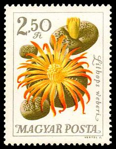 Thumbnail for version as of 30 October 2010 Stamp World, Valley Of Flowers, Postage Stamp Art, Going Postal, Love Stamps, Flower Stamp, Small Art, Stamp Collecting, Illustrations Posters