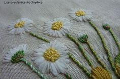 autumn daisies (5)