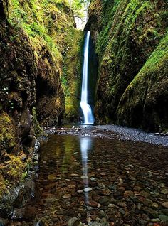 Oneonta Falls, Columbia River Gorge, Or