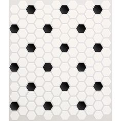 Shop American Olean 10-Pack Satinglo Hex Ice White with Black Dot Ceramic Mosaic Random Floor Tile (Common: 10-in x 12-in; Actual: 10.5-in x 12.5-in) at Lowes.com