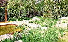 Sarah Price's guide to naturalistic planting for your garden - Telegraph