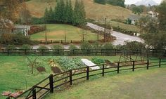 A Winter Vegetable Garden in Northern California - Vegetable Gardener