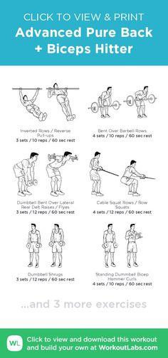 c28b19bda Advanced Pure Back + Biceps Hitter · WorkoutLabs Fit