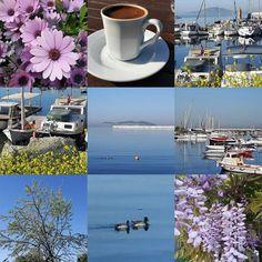 #günaydın #sağlık #aşk #bahar #mutluluk #sevgi #enerji #ışık #doğa #çiçekler #güzelbirgünolsun by ozanozlem