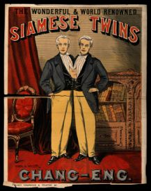 The original conjoined twins that originated the term 'siamese' twins.