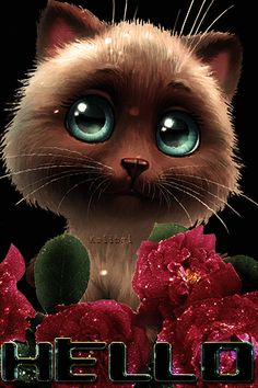 Hello Wallpaper, Flower Phone Wallpaper, Gif Animé, Animated Gif, Cute Gifs, Gif Mignon, Hello Quotes, Love You Gif, Happy Birthday Celebration