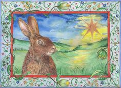 Star gazing hare