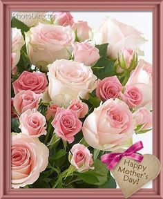 There is no doubt that flowers can help you expressing your hidden love, emotions and feelings for your loved one. If you want to make your husband feels positive about you, it is time to send him flowers online. Wallpaper Nature Flowers, Flower Background Wallpaper, Beautiful Flowers Wallpapers, Flower Backgrounds, Flower Wallpaper, Beautiful Roses, Pretty Flowers, Yellow Roses, Pink Roses