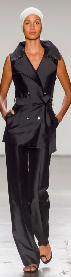Spring 2017 Ready-to-Wear Zang Toi