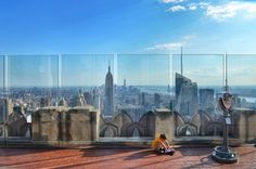 There are so many great thing to do in NYC with kids! From the Top Of The Rock To Central Park and culture at incredible museums. | MarinoBambinos