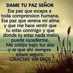 Dame to Paz Senor Faith Quotes, Bible Quotes, Bible Verses, Me Quotes, Qoutes, Spanish Prayers, Frases Humor, Morning Prayers, God Prayer