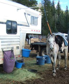 Attaching water buckets and haybags to your horse trailer