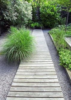 WOOD LANDSCAPING IDEAS FOR BACKYARD DESIGNS From front gate through to lawn? Pedestrian path with ability to drive through in an emergency.From front gate through to lawn? Pedestrian path with ability to drive through in an emergency. Wooded Landscaping, Backyard Landscaping, Backyard Designs, Backyard Ideas, Garden Ideas, Walkway Ideas, Wooded Backyard Landscape, Walkway Designs, Landscape Steps