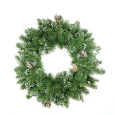 24 inch Frosted Mixed Pine and Pine Cone Artificial Christmas Wreath - Unlit, Green