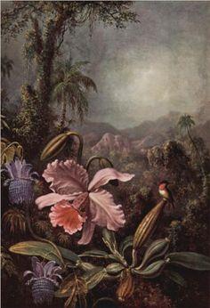 Orchid and Hummingbird - Martin Johnson Heade