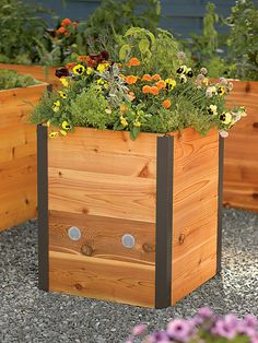 Elevated Cedar Raised Bed for standing while you garden. Elevated gardening means no kneeling or stooping to tend your plants, as well as fewer pest problems. These red cedar beds look great as entrance markers to your home or property. Elevated Garden Beds, Elevated Bed, Cedar Raised Garden Beds, Building A Raised Garden, Hillside Garden, Raised Planter, Tall Outdoor Planters, Cedar Planters, Wooden Planters
