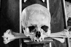 #skull #bone #darkness #black&white