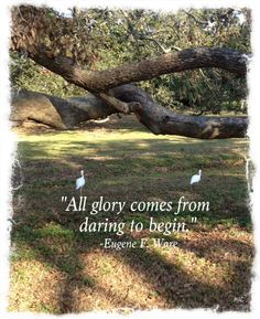 Thought for Today - Sept. 30, 2012 -     All glory comes from daring to begin. -Eugene F. Ware