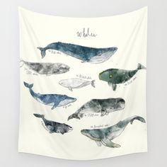 Whales Wall Tapestry by Amy Hamilton | Society6