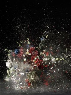 All Visual Arts - Vanitas: The Transience of Earthly Pleasures - Selected Works Vanitas, Still Life Photography, Art Photography, Photography Flowers, Digital Photography, Renaissance Paintings, Expo, The Guardian, Flower Art